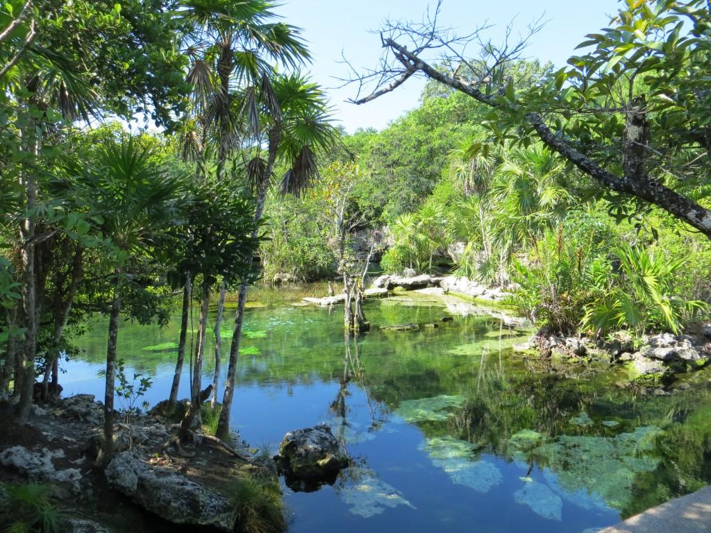 Blick auf die Cenote Azul in Mexiko