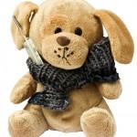 Teddy mit Fieberthermometer
