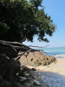Strand Similan Islands