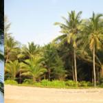 Geheimtipps für die Insel Phuket