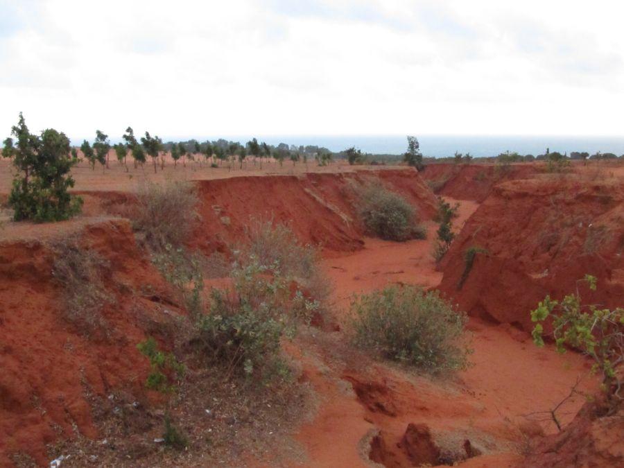 Canyon im roten Sand