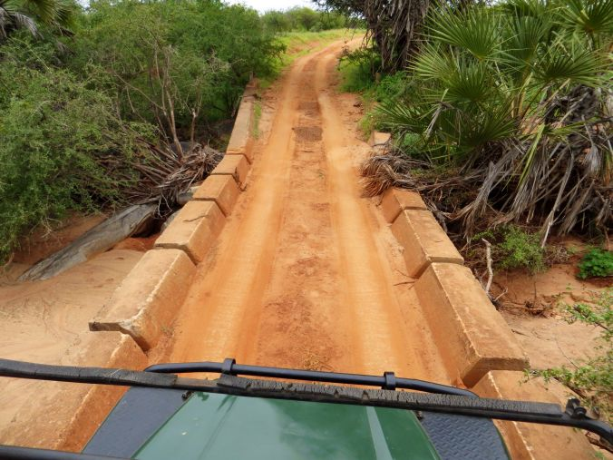 Abenteuerliche Wege auf der Safari