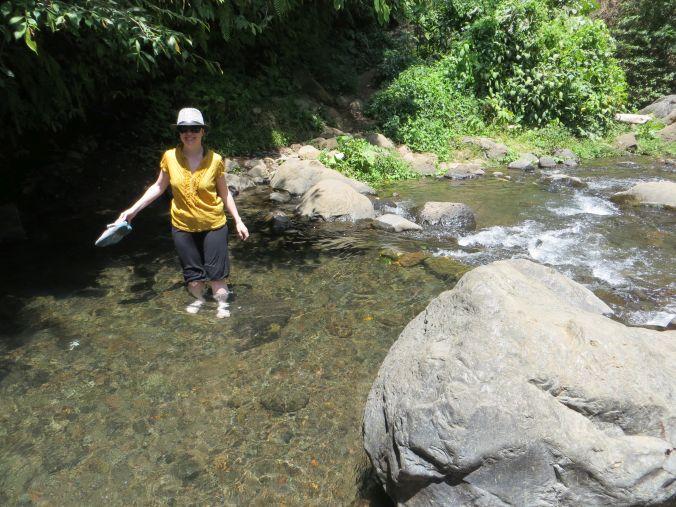 Durch den Fluß...