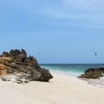 """Kitesurfing Watamu – die Begegnung mit dem portugiesischen """"Man of War"""""""