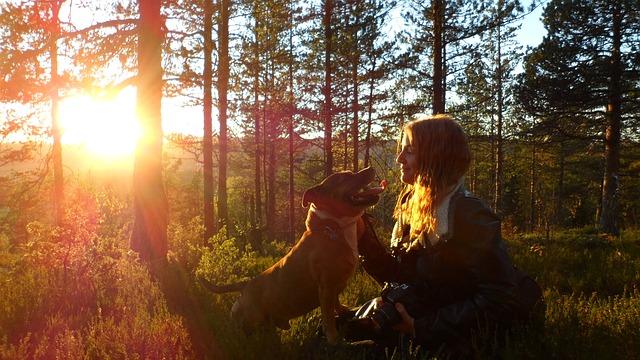 Heiratsantrag mit Hund