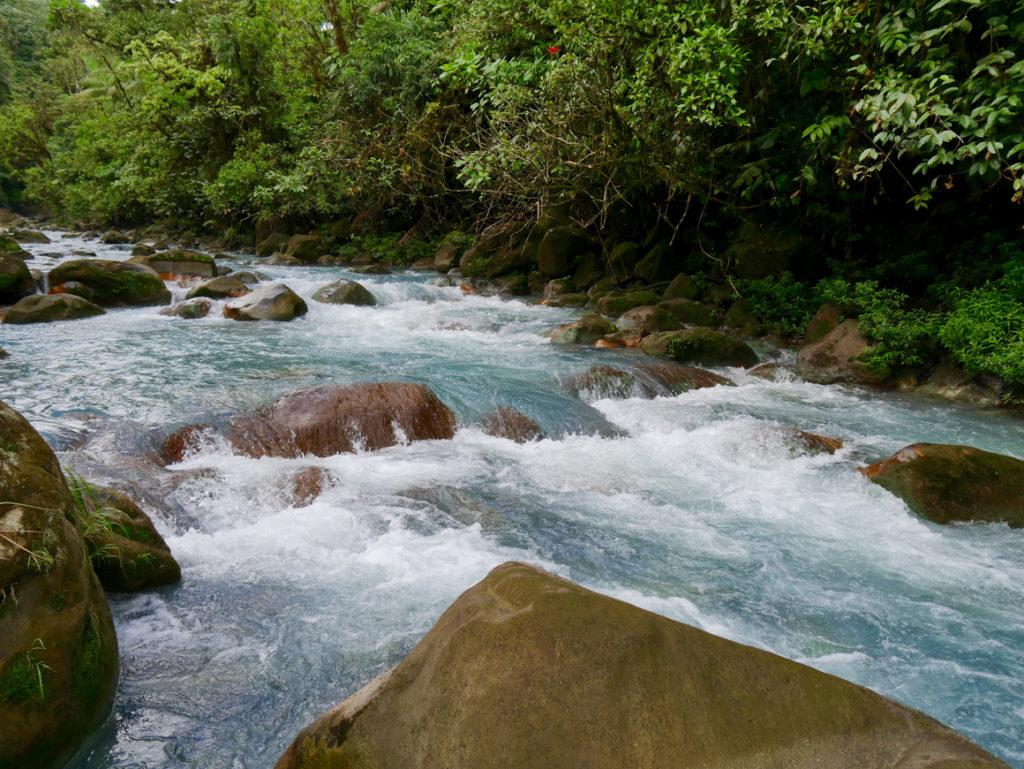Strömung im Rio Celeste