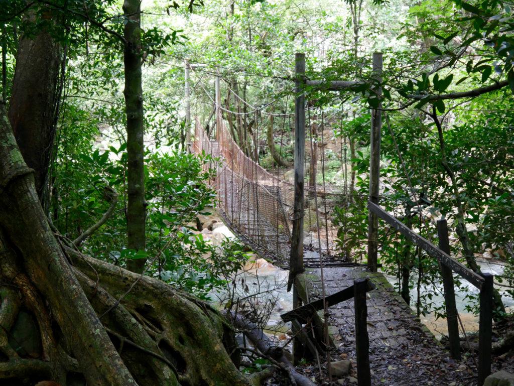 alte Hängebrücke im Rincón de la Vieja