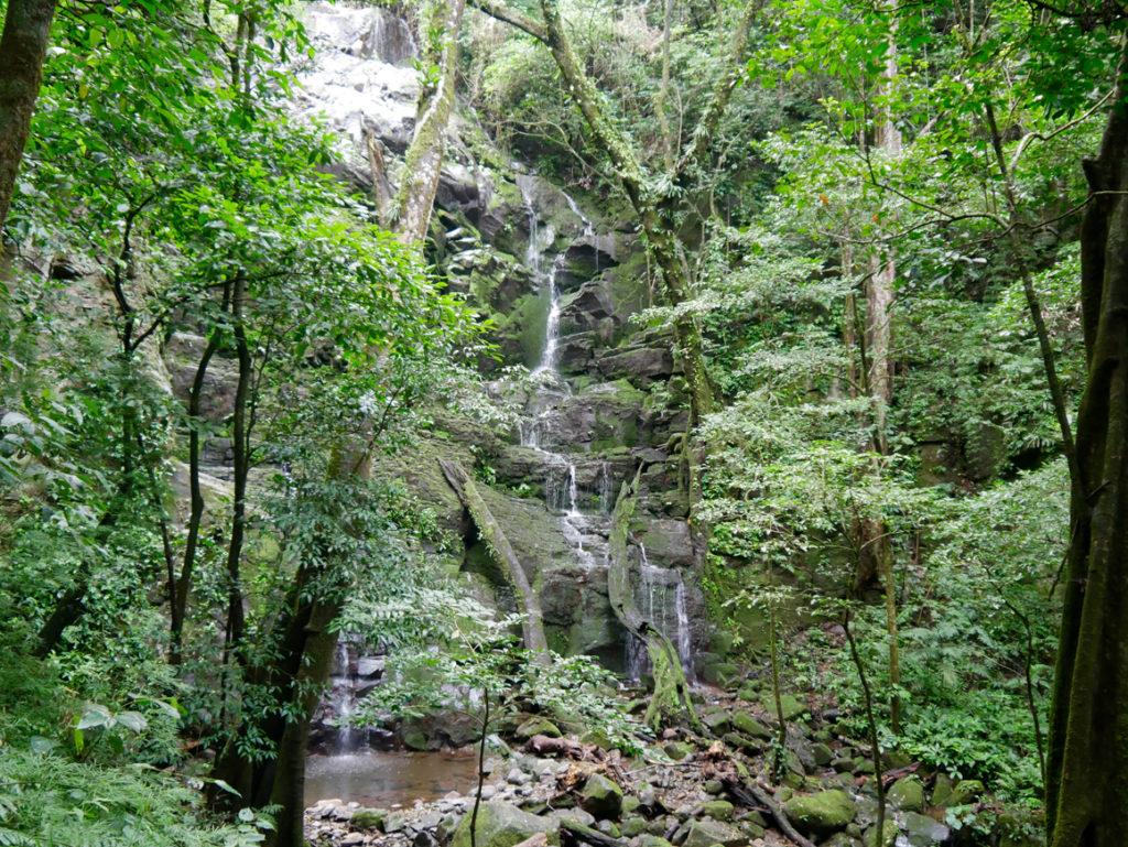Jahreszeiten Wasserfall