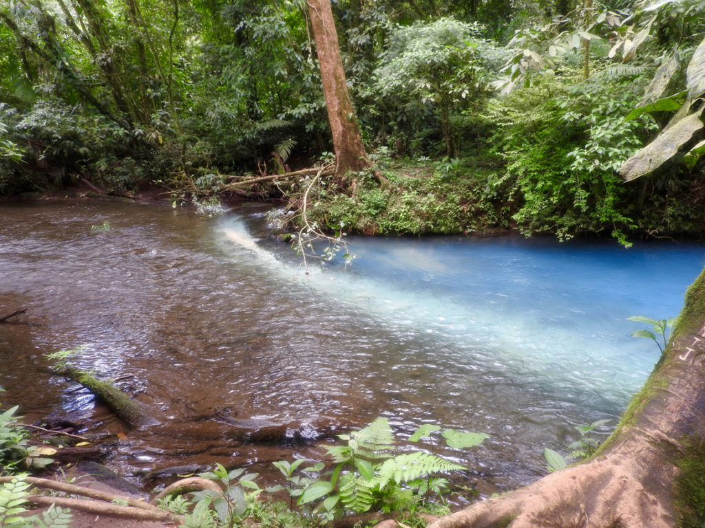 Der Ursprung des blauen Rio Celeste